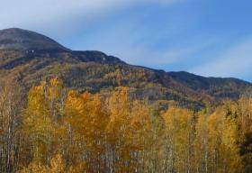 Landscape in Fort Liard Area